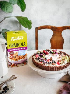 Granola-marjakook